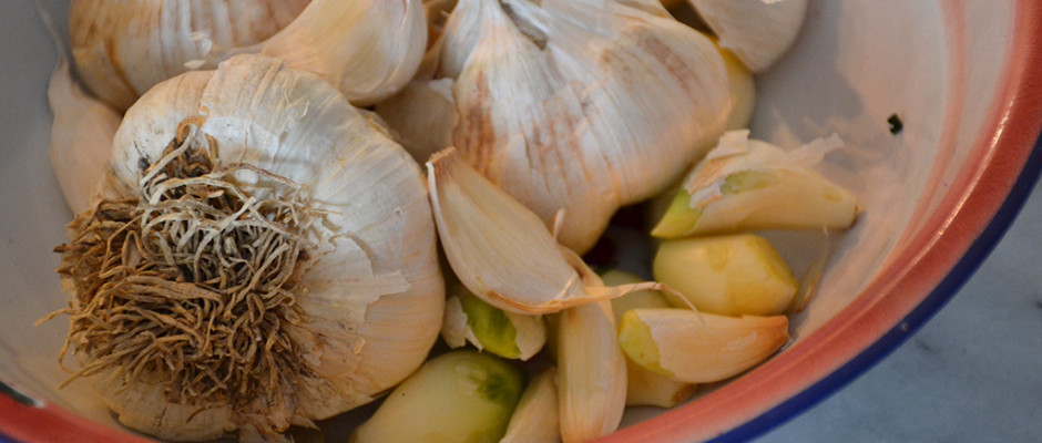 Garlic-from-the garlic-man-Odyssey-Poros-Greece