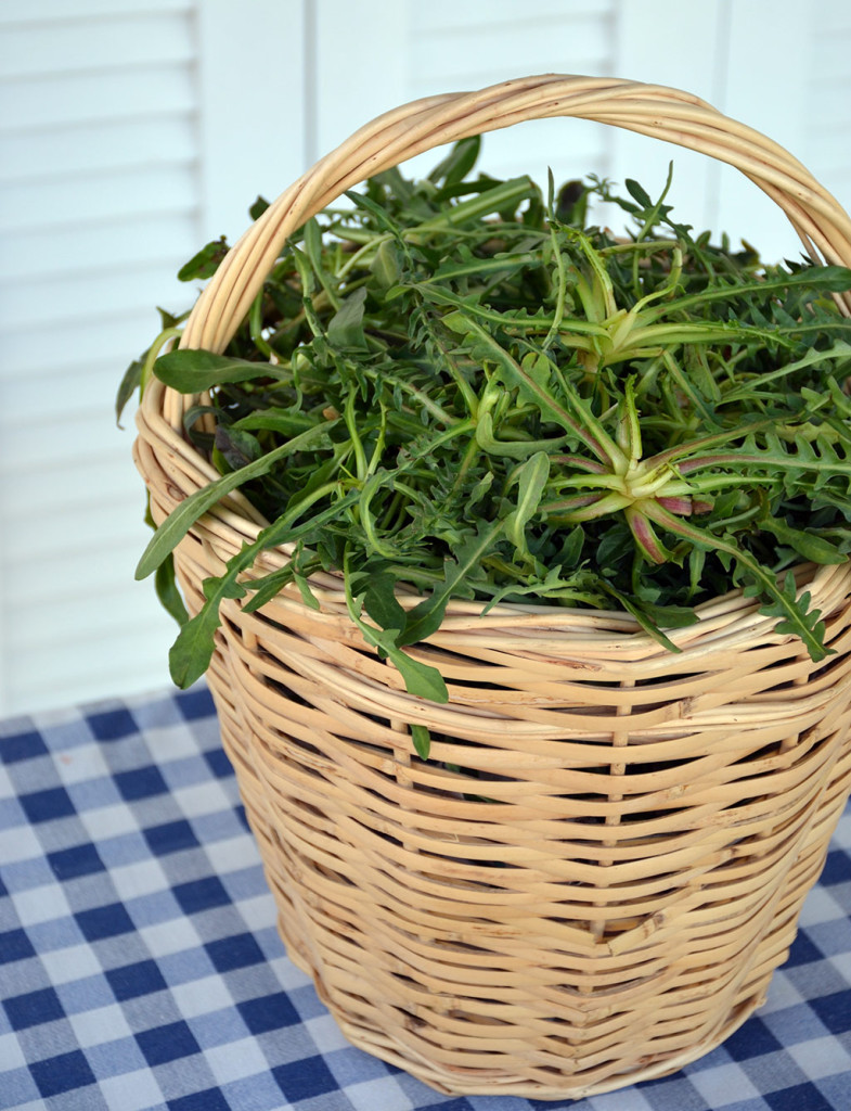 Edible-wild-greens-Horta