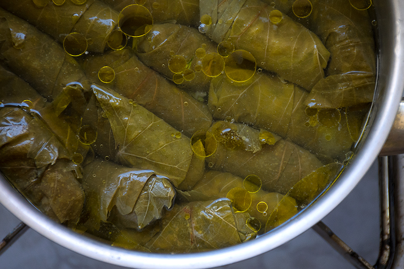 Cooking the Greek Dolmades