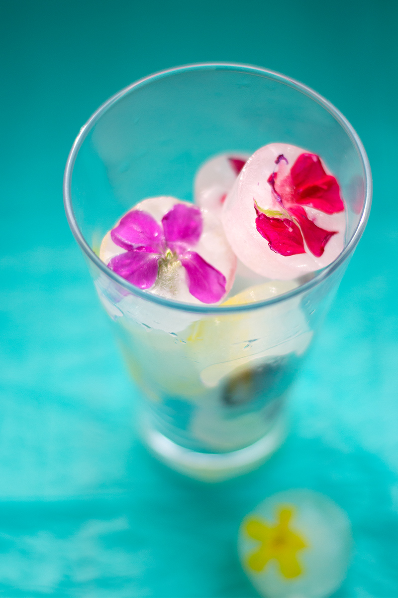 Ice cubes with edible flowers Odyssey Poros Greece