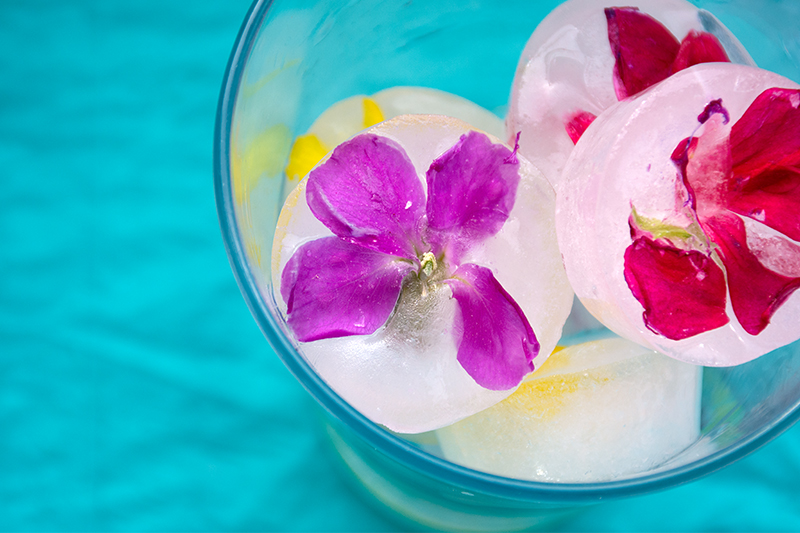 Katerina's ice cubes with edible flowers Odyssey Poros Greece