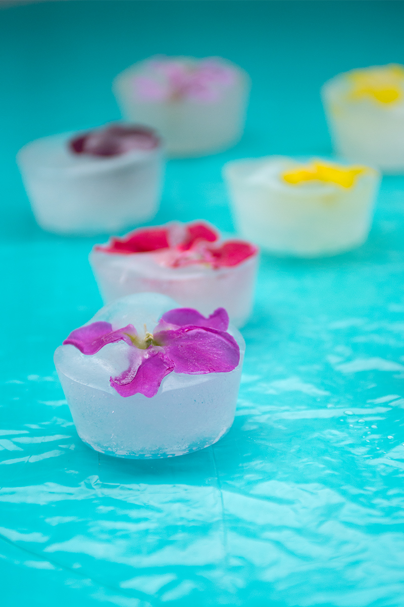 Odyssey's ice cubes with edible flowers Odyssey Poros Greece
