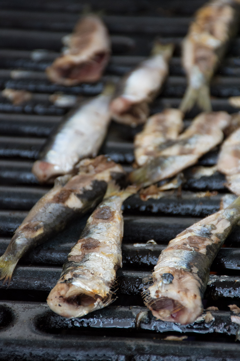 Grilling sardines on the barbecue Odyssey Poros Greece