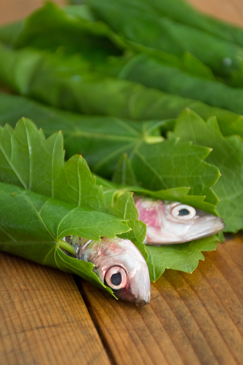 Greek sardines in grape leaves with lemon-sauce Odyssey Poros Greece