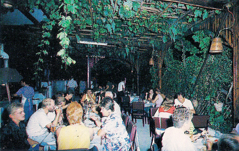 Pergola-of-grapes-in-restaurant-spiros