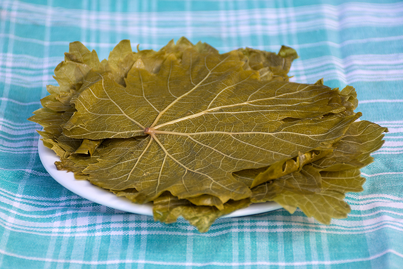 Vine leaves for the Dolmades with egg-lemon sauce