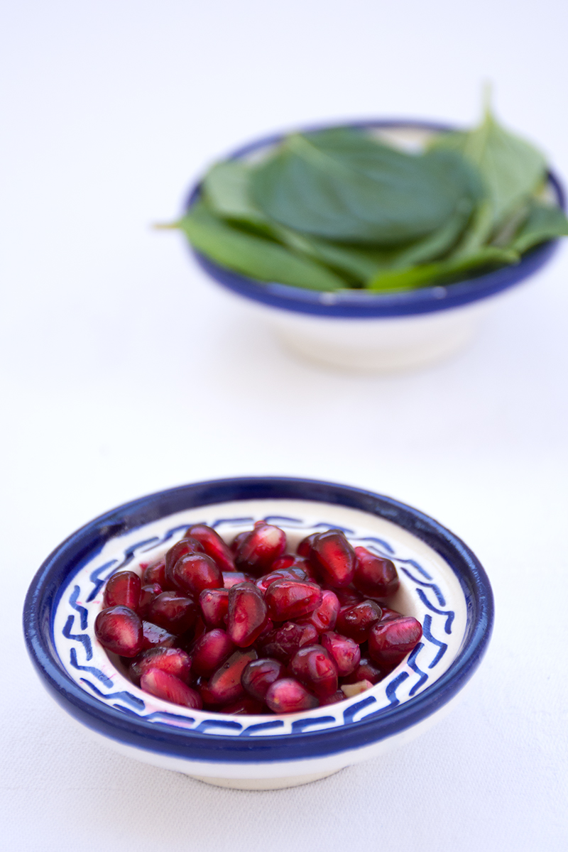 Ingredients for the Pomegranate-mint tea Poros Greece food photography