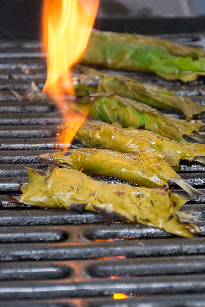 Grilled sardines in grape leaves on the barbeque Odyssey Poros Greece