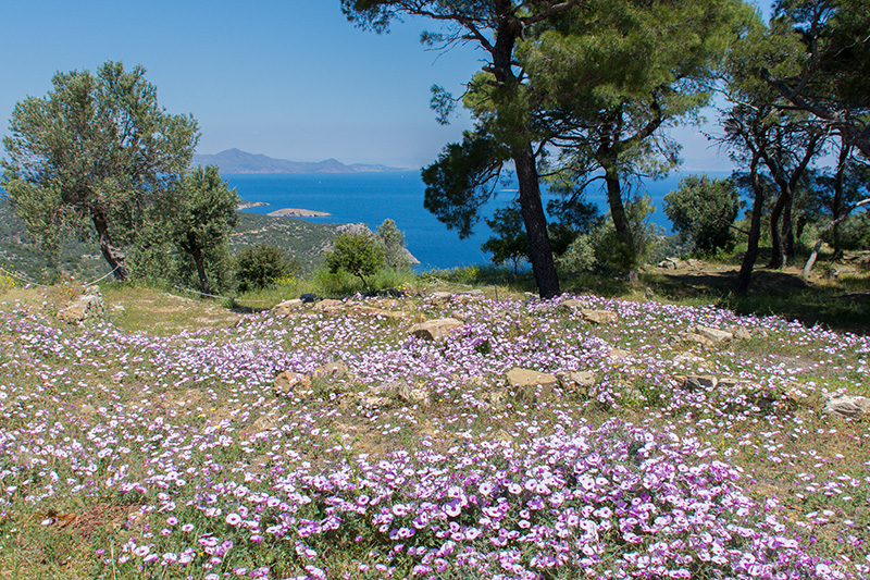 Poros Greece in spring Temple of Poseidon